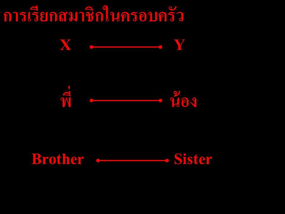 การเรียกสมาชิกในครอบครัว X Y พี่ น้อง Brother Sister