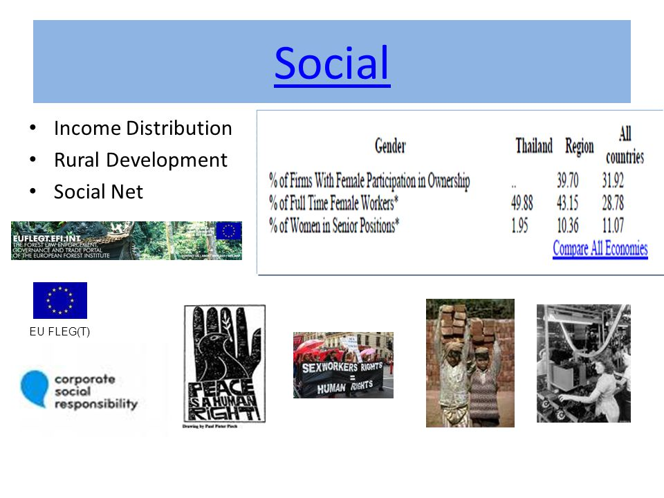 Social Income Distribution Rural Development Social Net EU FLEG(T)