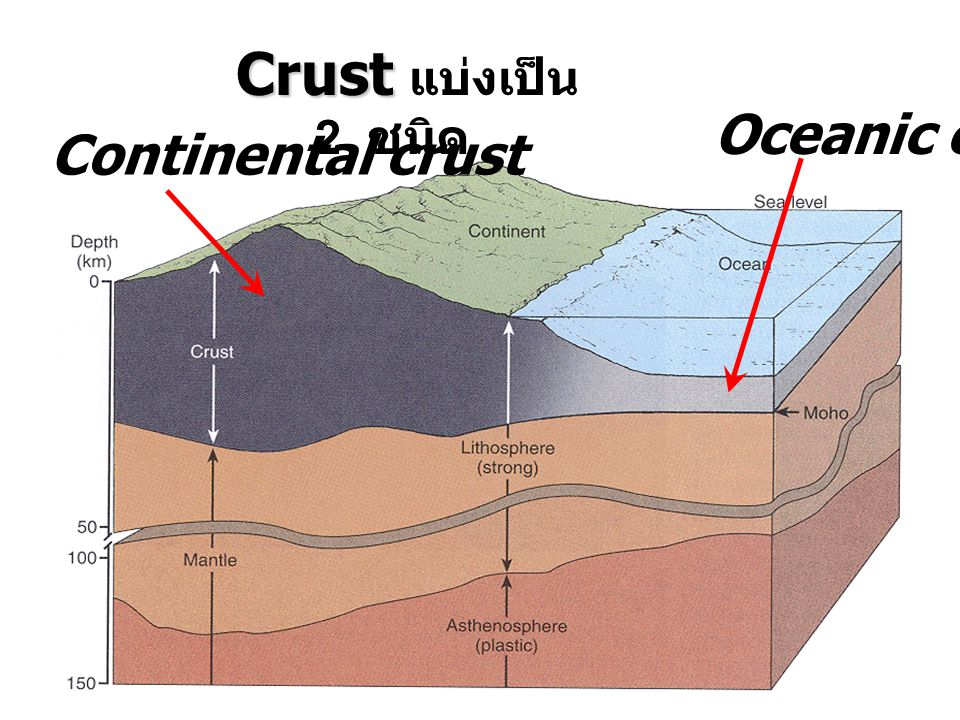 Oceanic crust Continental crust Crust แบ่งเป็น 2 ชนิด