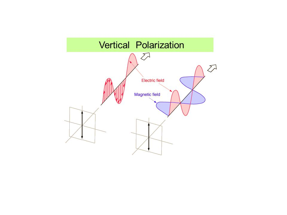 Vertical Polarization