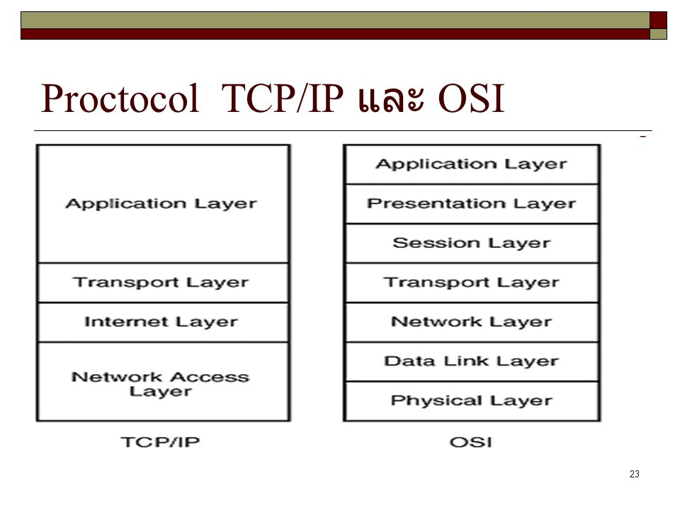 Proctocol TCP/IP และ OSI