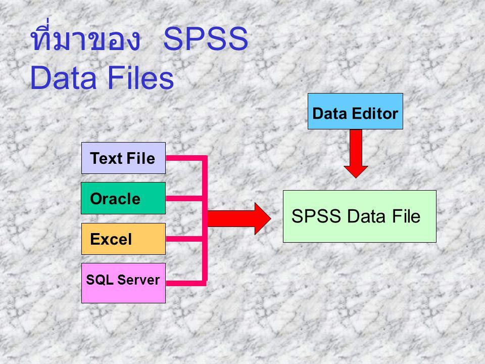 ที่มาของ SPSS Data Files