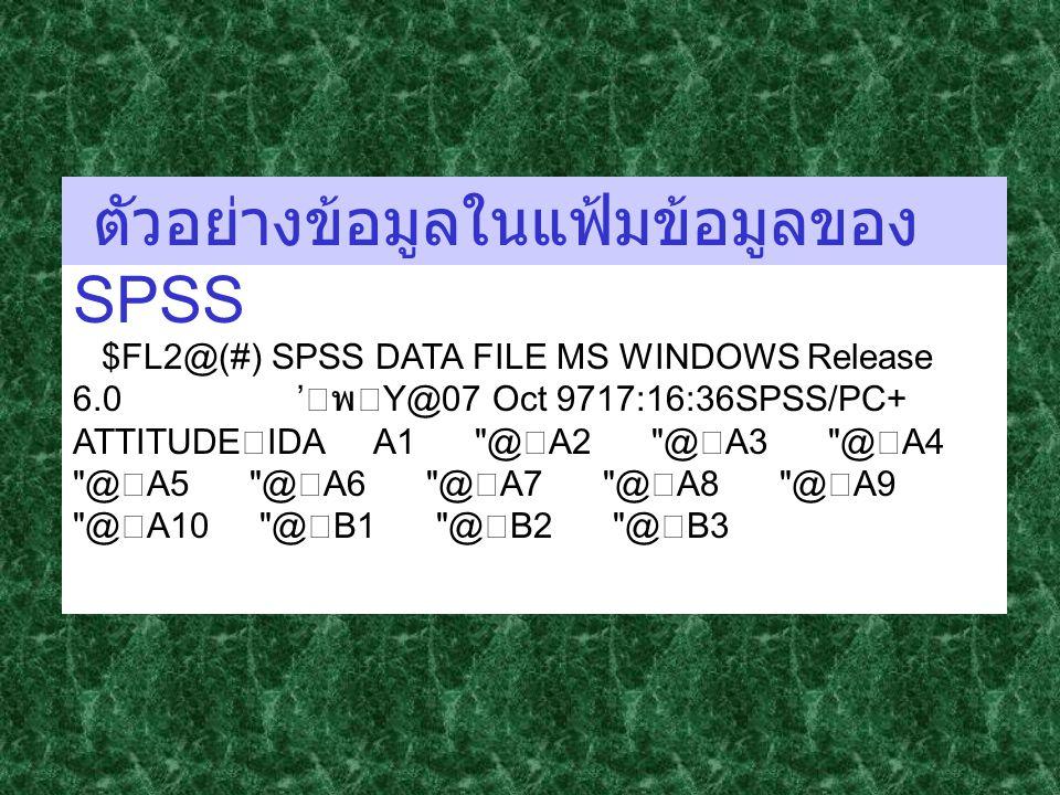 ตัวอย่างข้อมูลในแฟ้มข้อมูลของ SPSS