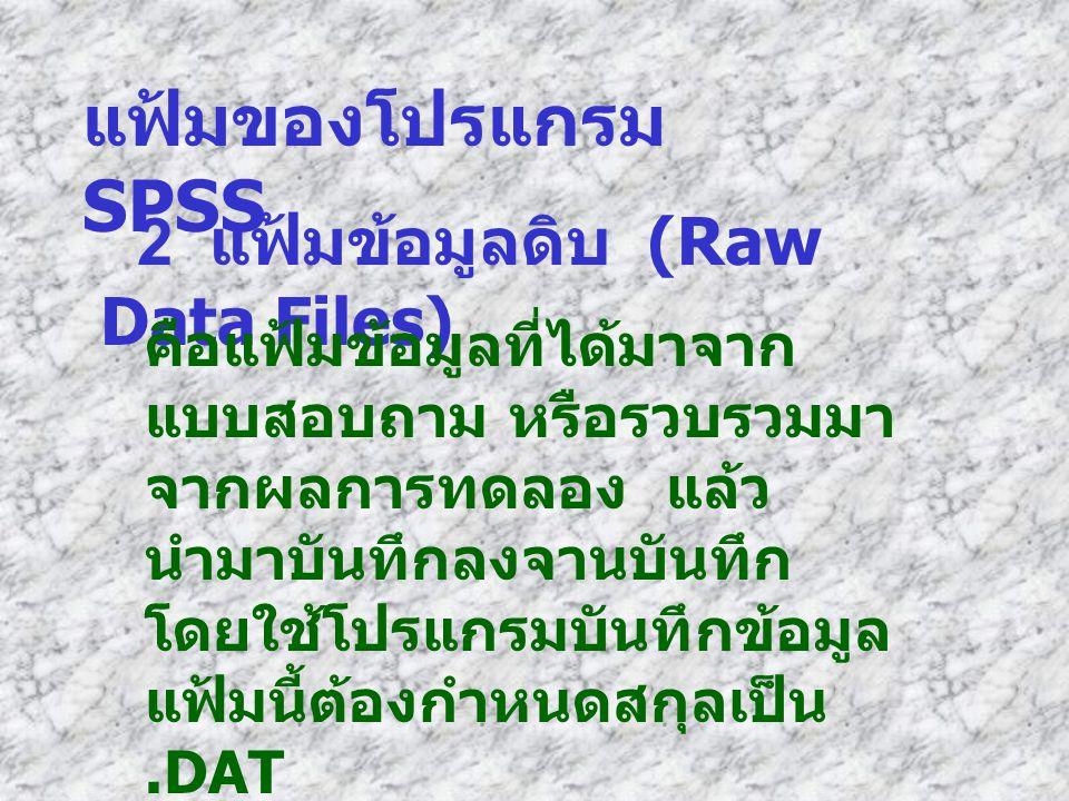 แฟ้มของโปรแกรม SPSS 2 แฟ้มข้อมูลดิบ (Raw Data Files)