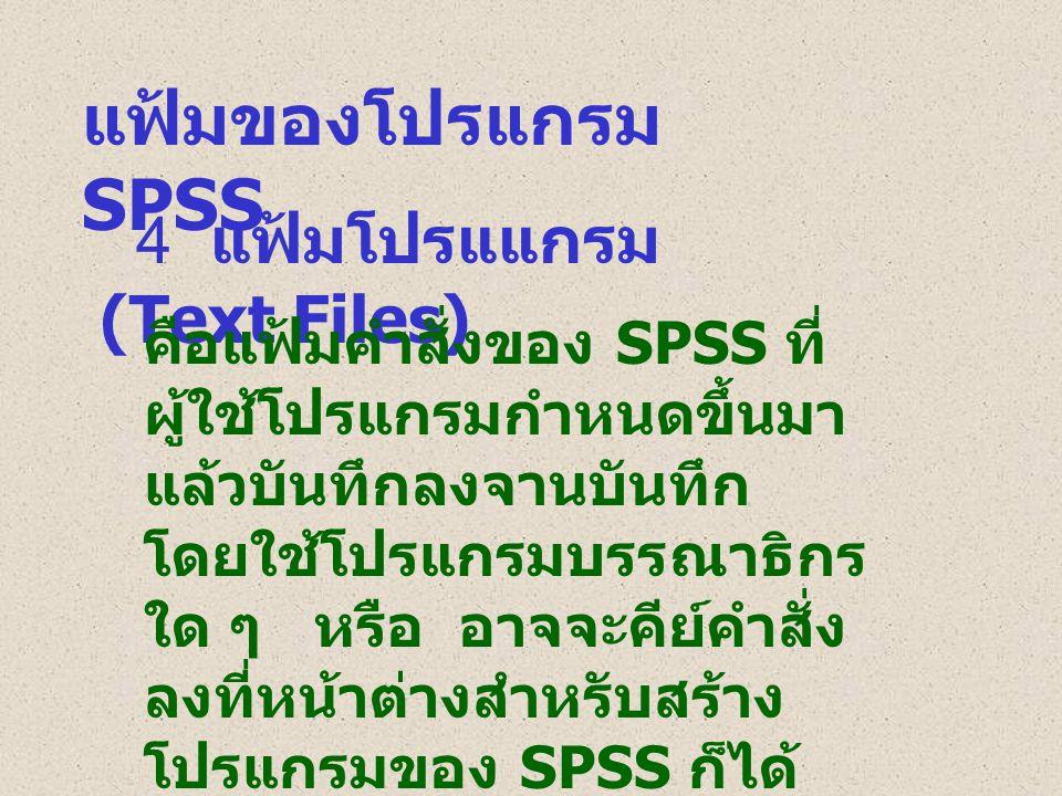 แฟ้มของโปรแกรม SPSS 4 แฟ้มโปรแแกรม (Text Files)