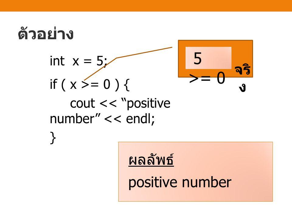 ตัวอย่าง 5 >= 0 จริง ผลลัพธ์ positive number