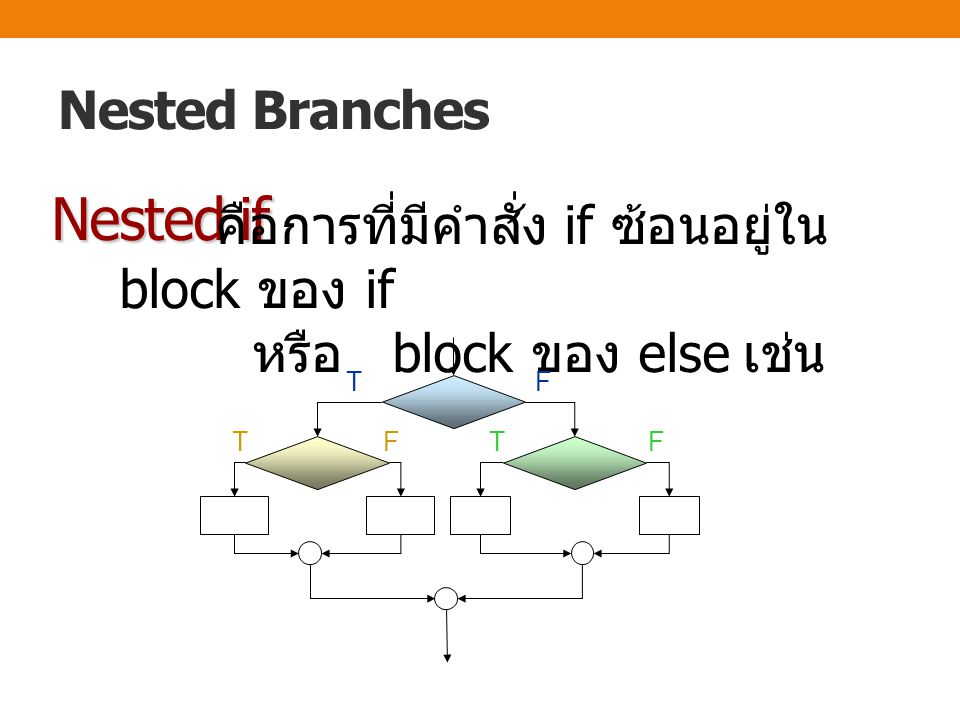 Nested if Nested Branches