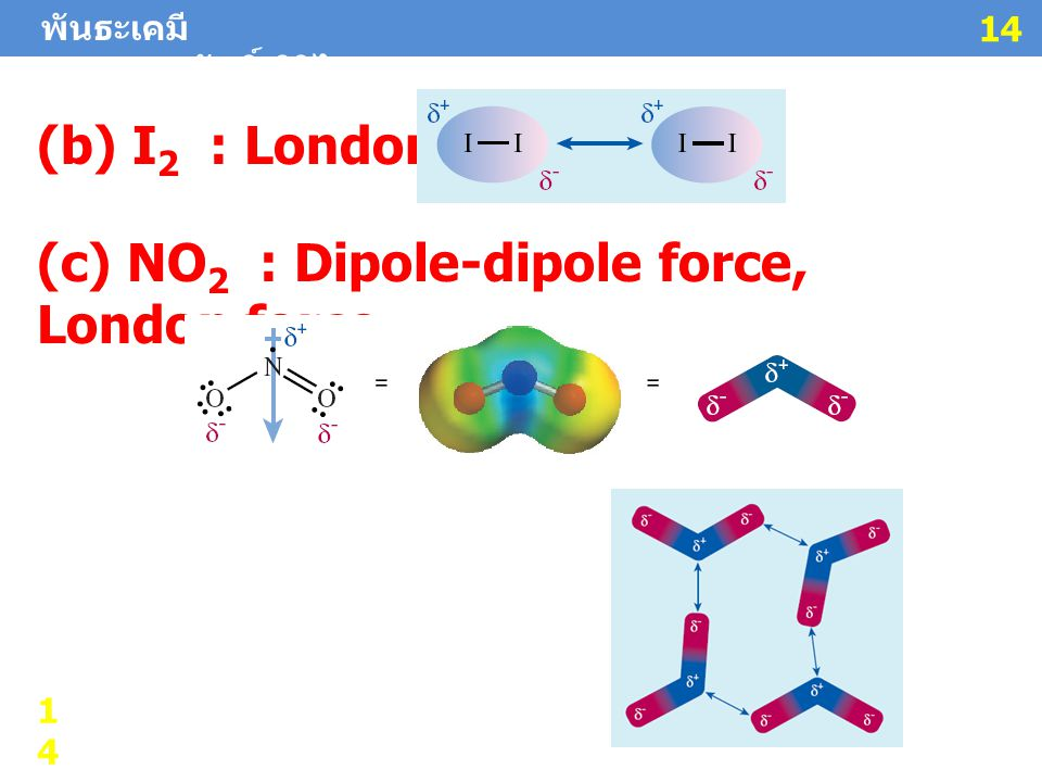 (c) NO2 : Dipole-dipole force, London force