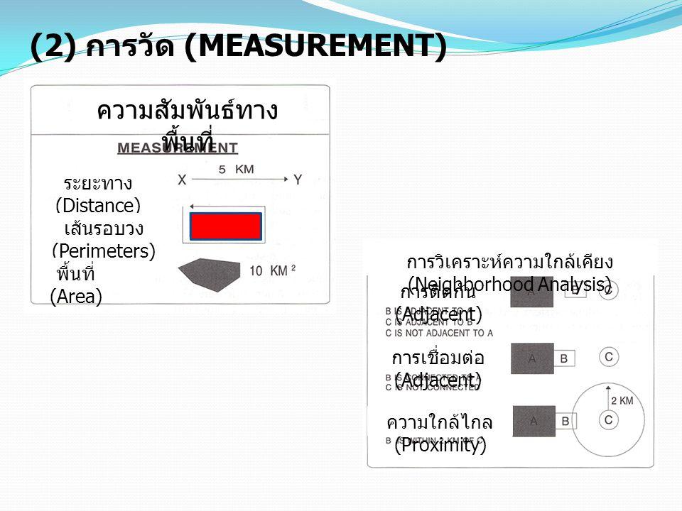 (2) การวัด (MEASUREMENT)