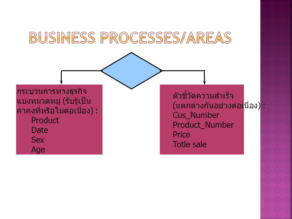 Business Processes/Areas