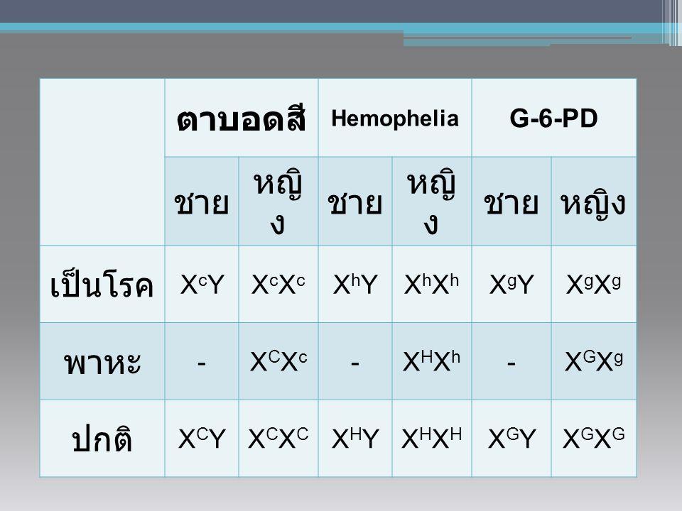 ตาบอดสี หญิง ชาย เป็นโรค พาหะ ปกติ G-6-PD XcY XcXc XhY XhXh XgY XgXg -