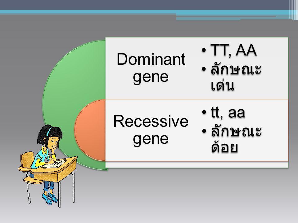 Dominant gene Recessive gene TT, AA ลักษณะเด่น tt, aa ลักษณะด้อย