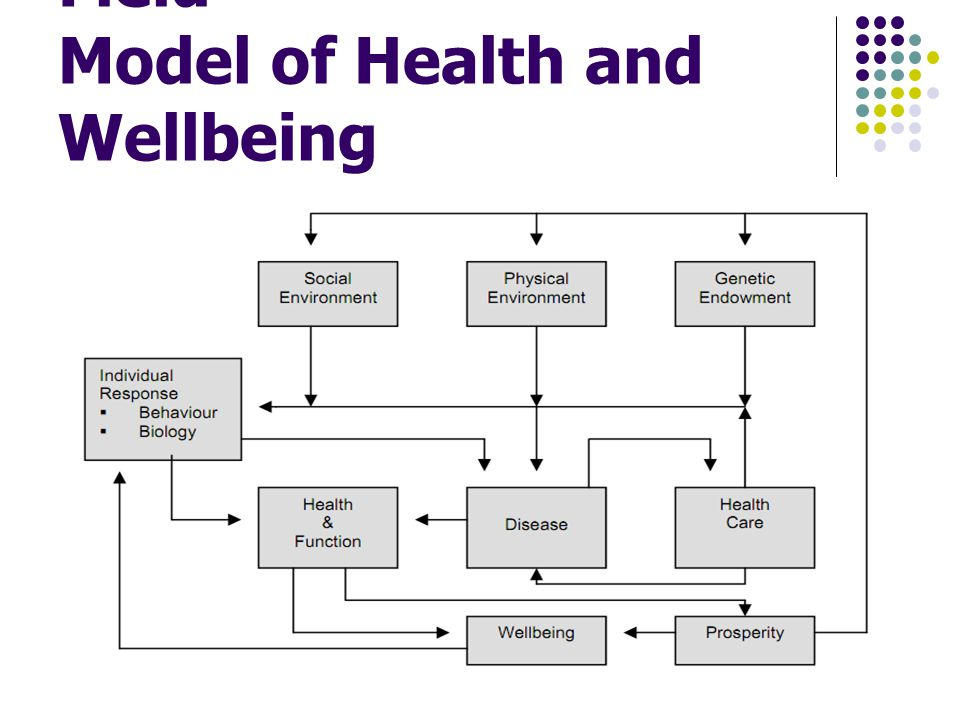 Evans and Stoddart Field Model of Health and Wellbeing