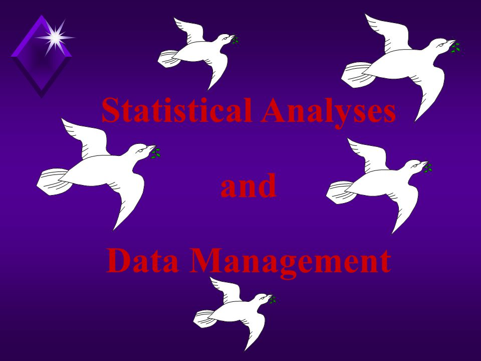 Statistical Analyses and Data Management