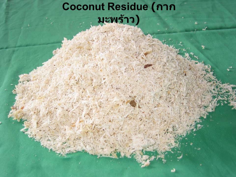 Coconut Residue (กากมะพร้าว)