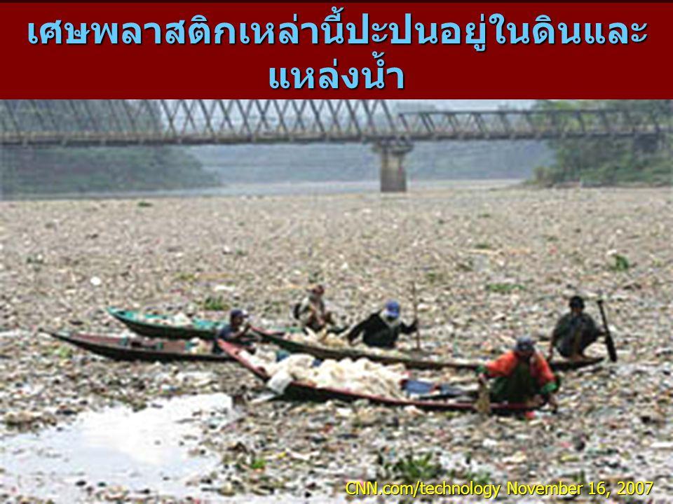 เศษพลาสติกเหล่านี้ปะปนอยู่ในดินและแหล่งน้ำ
