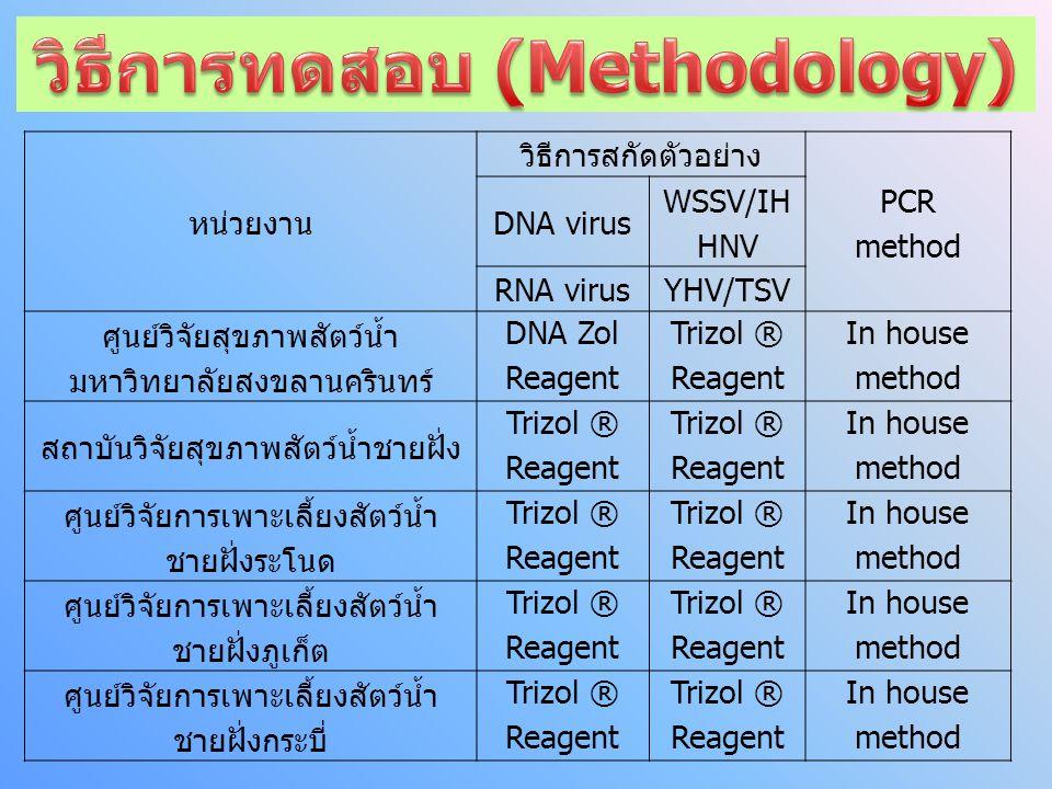 วิธีการทดสอบ (Methodology)