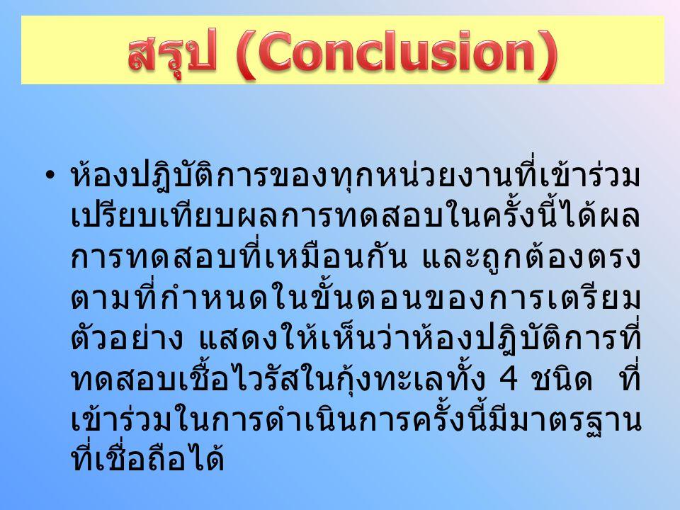 สรุป (Conclusion)