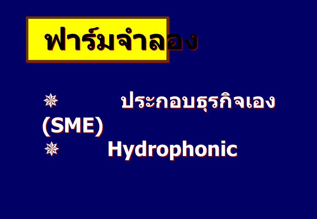 ฟาร์มจำลอง  ประกอบธุรกิจเอง (SME)  Hydrophonic