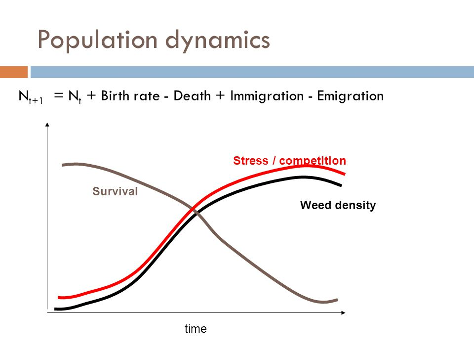 Population dynamics Nt+1 = Nt + Birth rate - Death + Immigration - Emigration. Stress / competition.