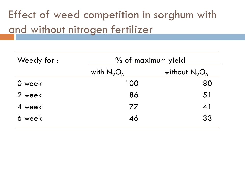Effect of weed competition in sorghum with and without nitrogen fertilizer