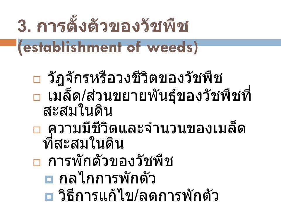 3. การตั้งตัวของวัชพืช (establishment of weeds)