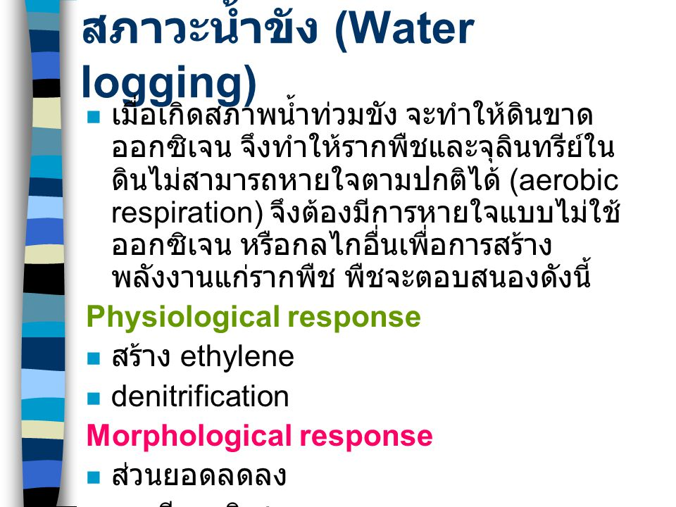 สภาวะน้ำขัง (Water logging)