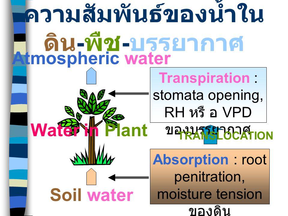 ความสัมพันธ์ของน้ำในดิน-พืช-บรรยากาศ
