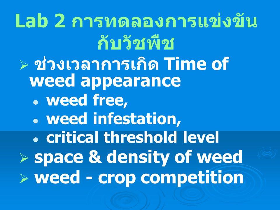 Lab 2 การทดลองการแข่งขันกับวัชพืช