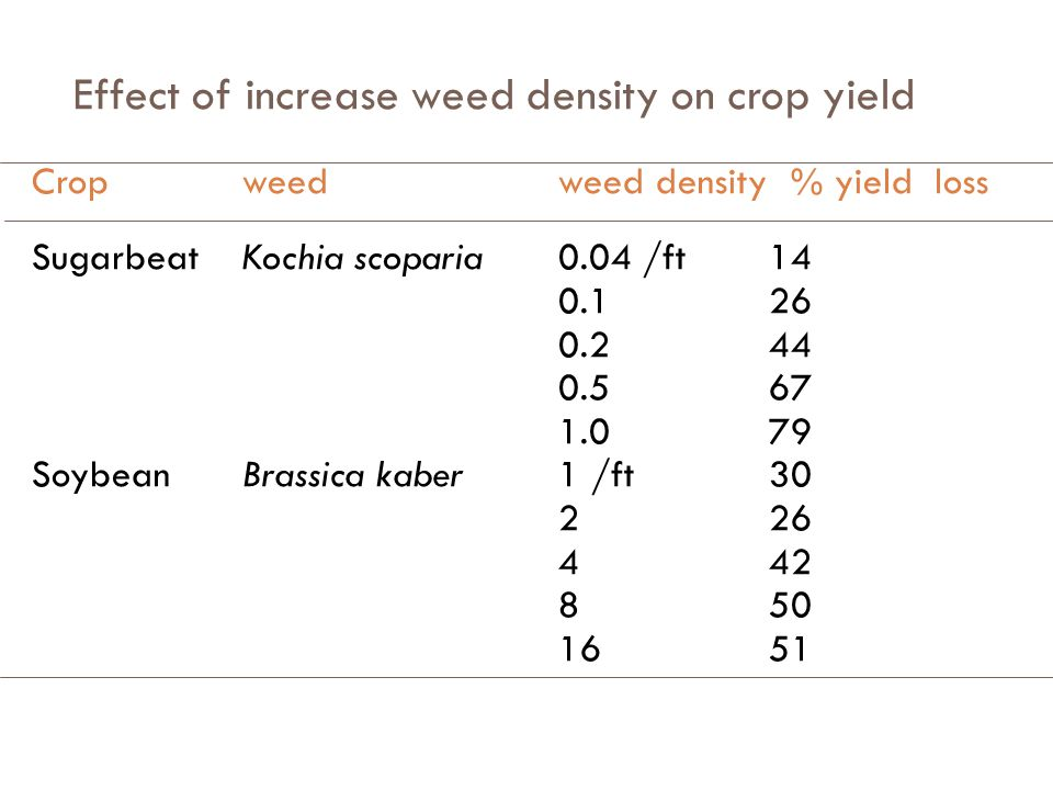 Effect of increase weed density on crop yield