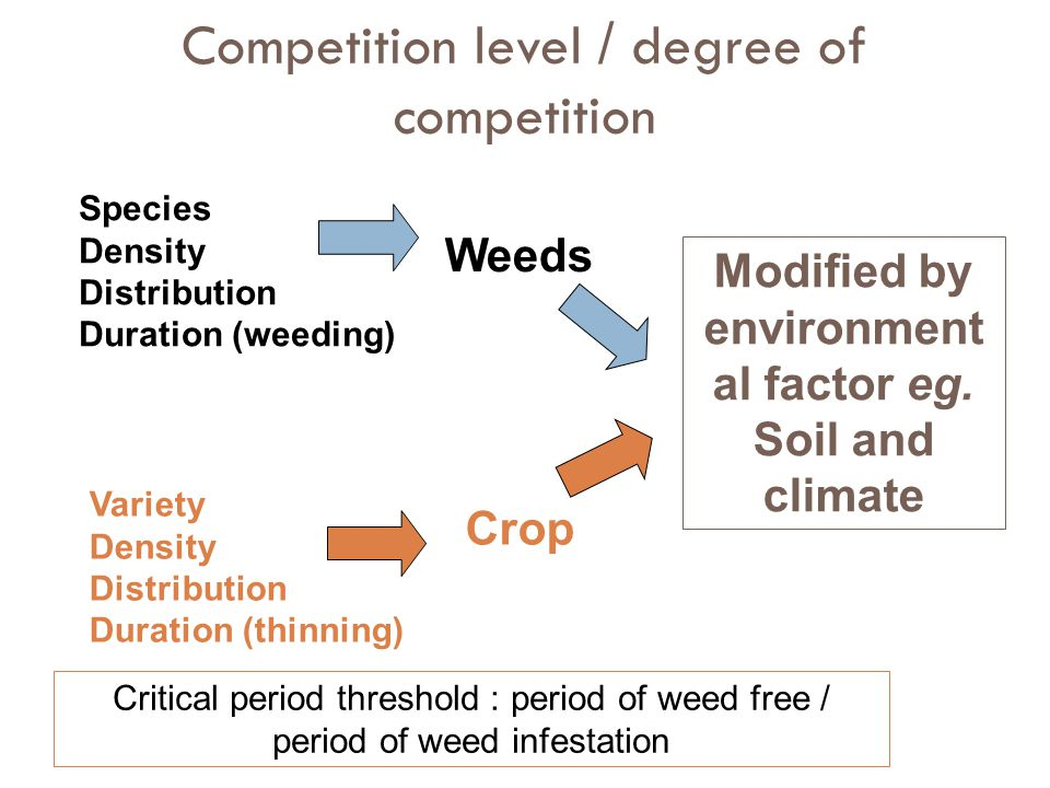 Competition level / degree of competition