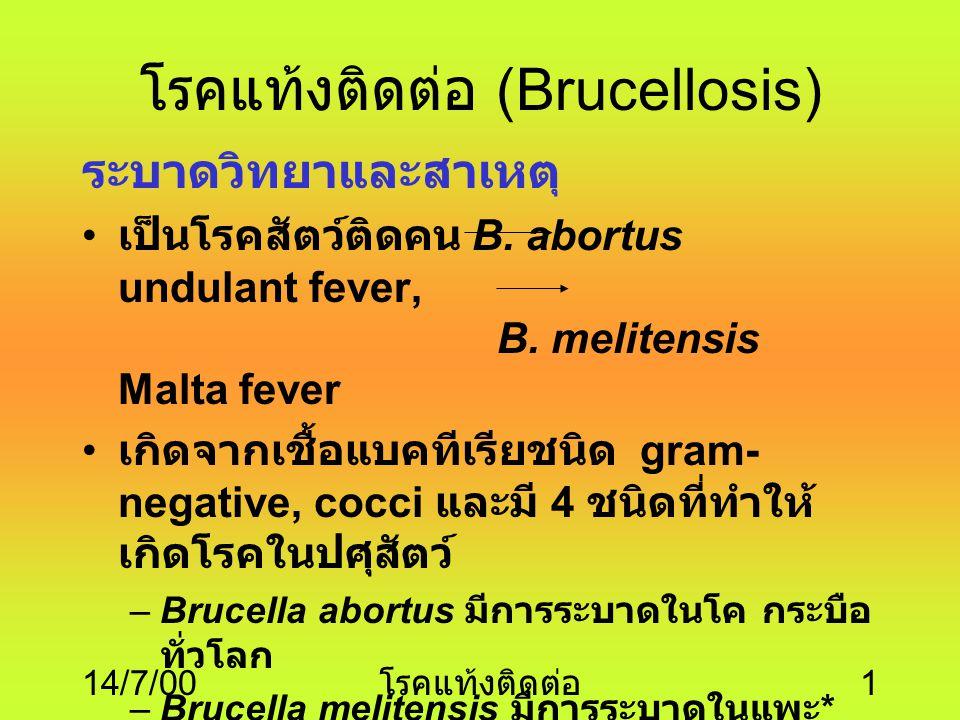 โรคแท้งติดต่อ (Brucellosis)