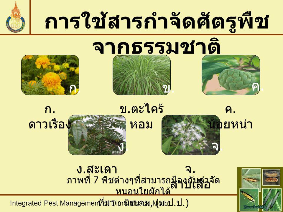 การใช้สารกำจัดศัตรูพืชจากธรรมชาติ