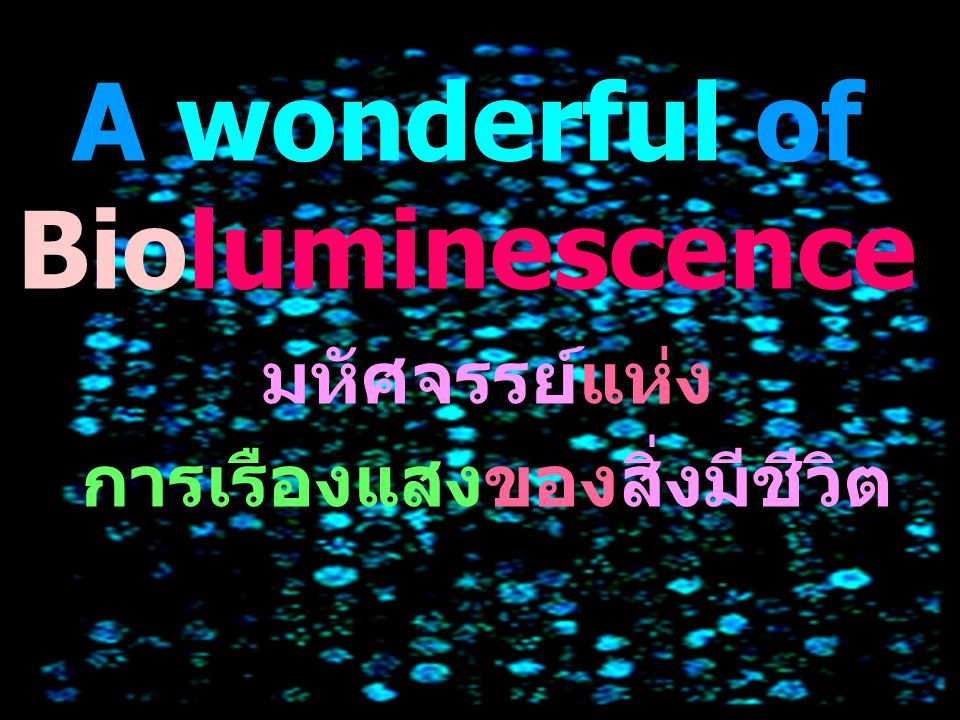 A wonderful of Bioluminescence