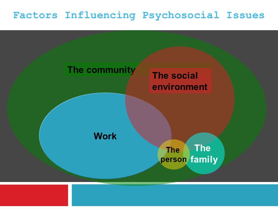Factors Influencing Psychosocial Issues