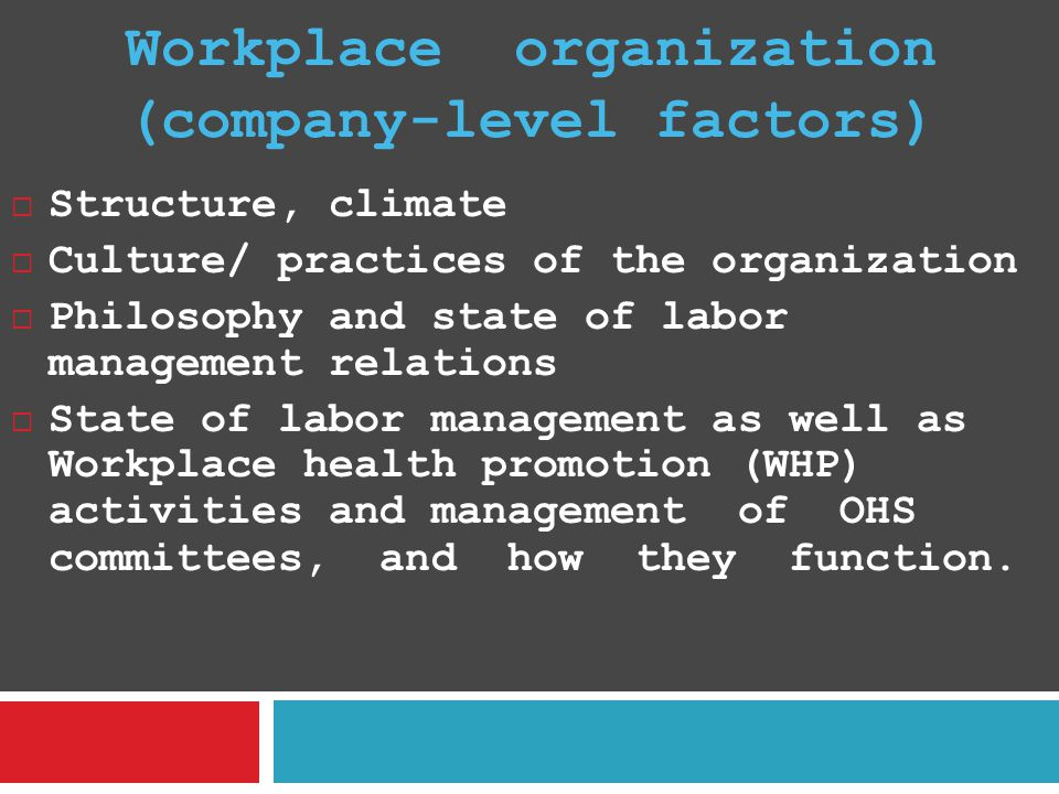 Workplace organization (company-level factors)