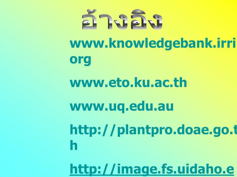 www.knowledgebank.irri.org www.eto.ku.ac.th www.uq.edu.au