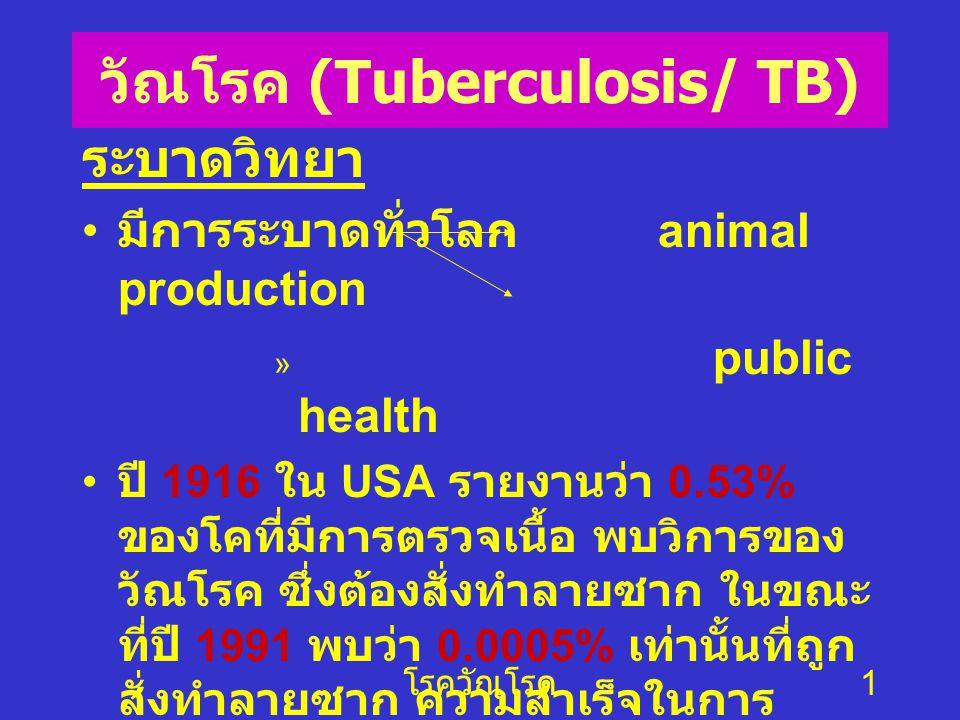 วัณโรค (Tuberculosis/ TB)