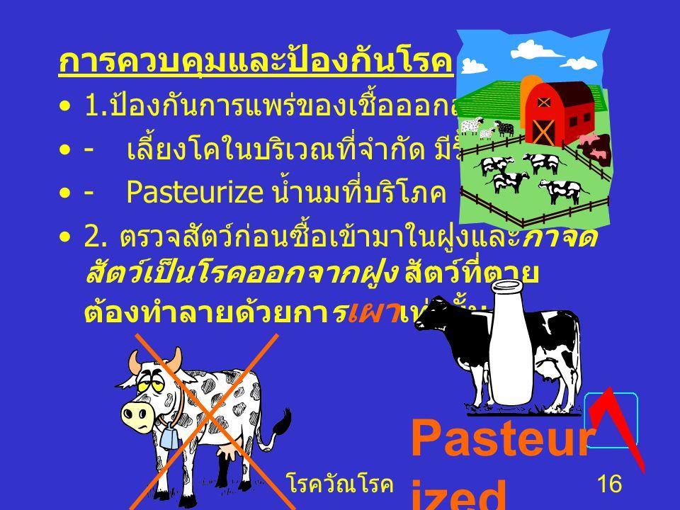 Pasteurized การควบคุมและป้องกันโรค