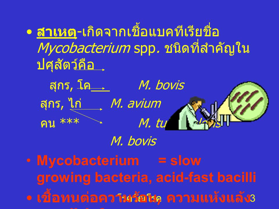 Mycobacterium = slow growing bacteria, acid-fast bacilli