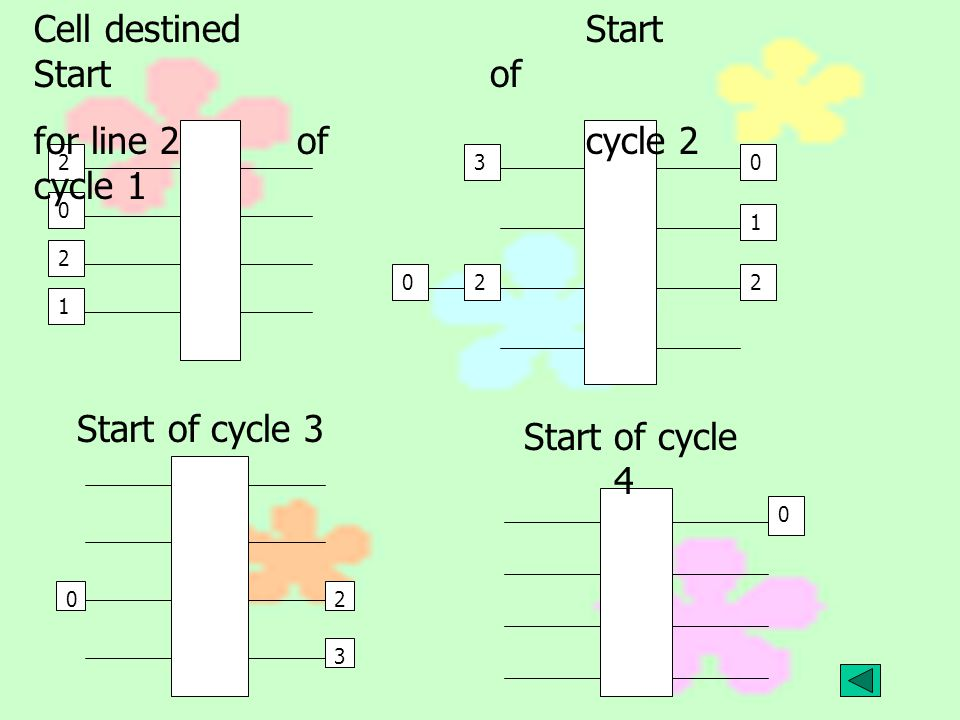 Cell destined Start for line 2 of cycle 1 Start of cycle 2