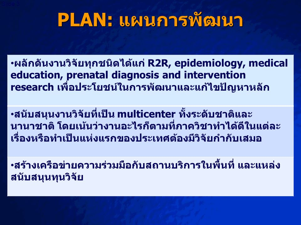 PLAN: แผนการพัฒนา