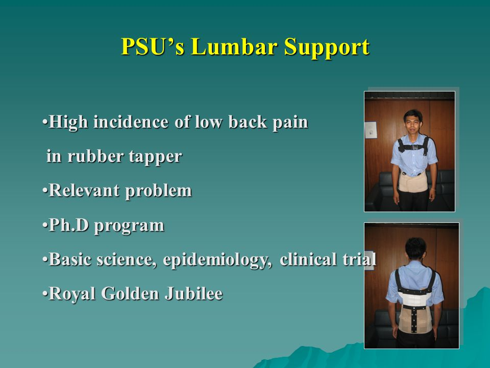 PSU's Lumbar Support High incidence of low back pain in rubber tapper