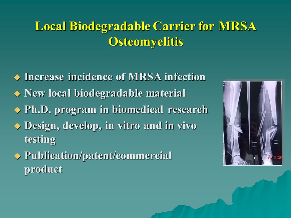 Local Biodegradable Carrier for MRSA Osteomyelitis