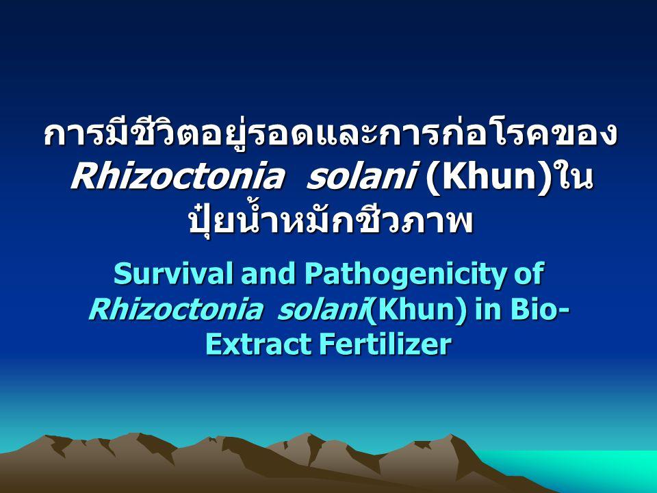 การมีชีวิตอยู่รอดและการก่อโรคของRhizoctonia solani (Khun)ใน ปุ๋ยน้ำหมักชีวภาพ