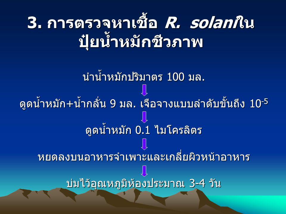 3. การตรวจหาเชื้อ R. solaniในปุ๋ยน้ำหมักชีวภาพ