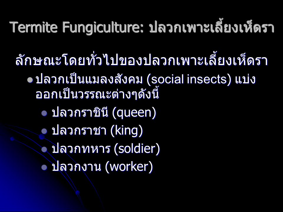 Termite Fungiculture: ปลวกเพาะเลี้ยงเห็ดรา