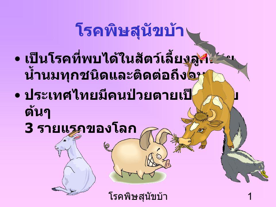 โรคพิษสุนัขบ้า เป็นโรคที่พบได้ในสัตว์เลี้ยงลูกด้วย น้ำนมทุกชนิดและติดต่อถึงคน. ประเทศไทยมีคนป่วยตายเป็นอันดับต้นๆ 3 รายแรกของโลก.