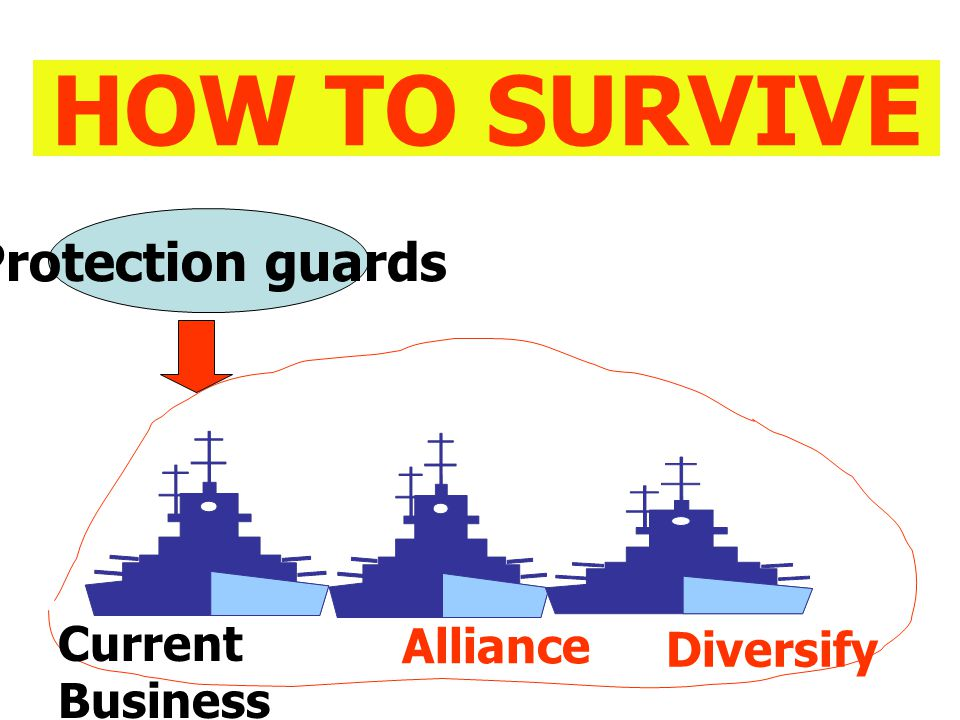 HOW TO SURVIVE Protection guards Current Business Alliance Diversify