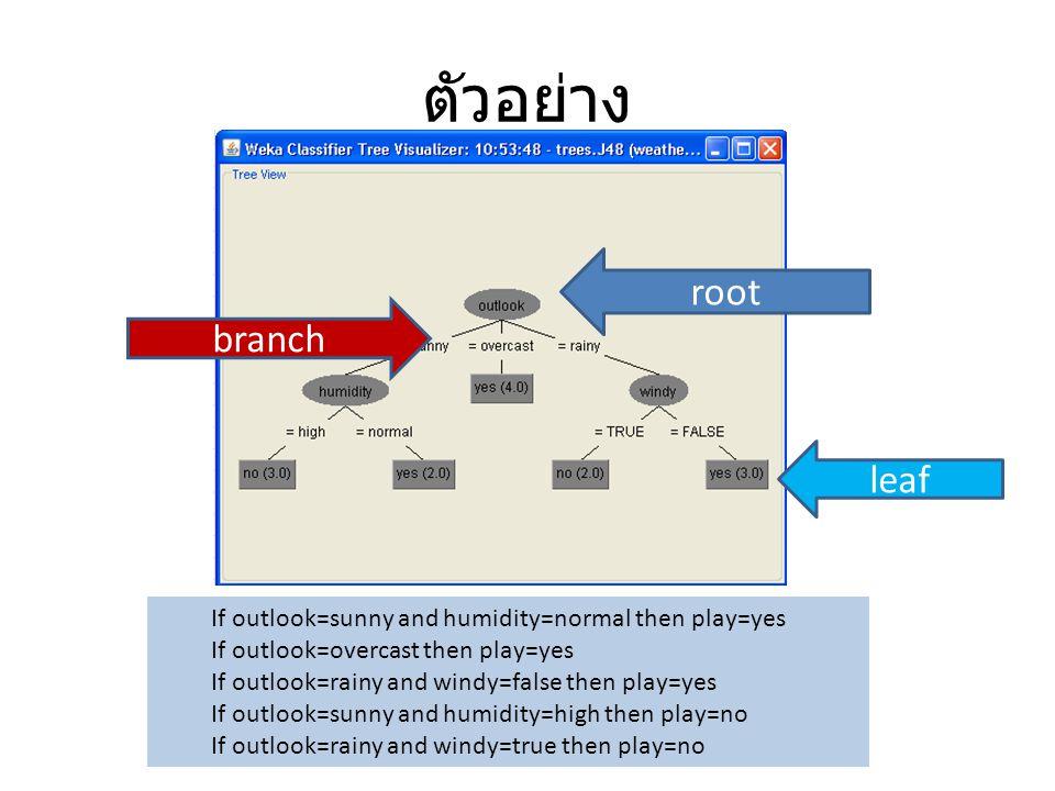 ตัวอย่าง root branch leaf